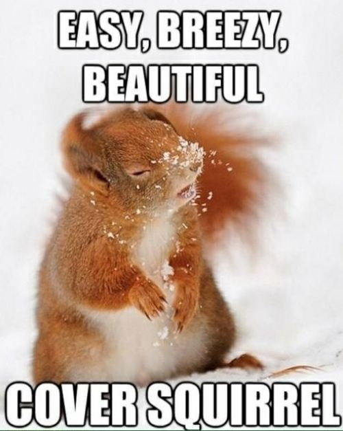 Easy, Breezy, Beautiful, Cover Squirrel