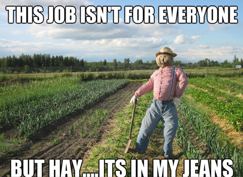 This job isn't for everyone - But hay... It's in my jeans