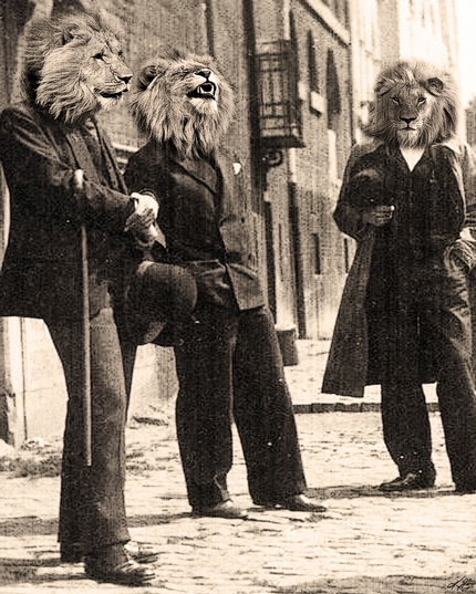 dandy-lions